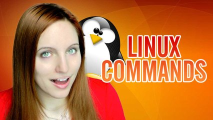 Command Linux 101: Wget - Get ALL THE THINGS!