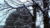 Det snør det snør tiddelibom