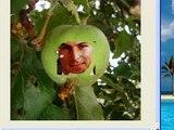 Gimp Tutorial: Steve Jobs, The Face of Apple Inc.