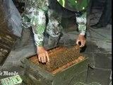 L'homme qui couvrait son corps de centaines de milliers d'abeilles !
