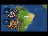 Mit offenen Karten - Biokraftstoff - der Fall Brasilien - 16.05.09