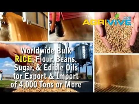 Wholesale Rice, Wholesale Rice, Wholesale Rice, Wholesale Rice, Wholesale Rice, Wholesale Rice