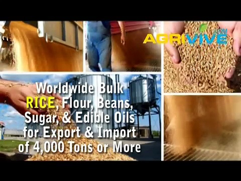 Bulk Rice Trading, Rice Trading, Rice Trading, Rice Trading, Rice Trading, Rice Trading, Rice Trading