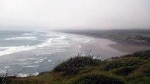 muriwai beach - new zealand - nuova zelanda - auckland