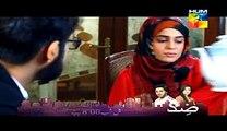 Aik Pal-Episode14-Full 23 february 2015 on hum tv