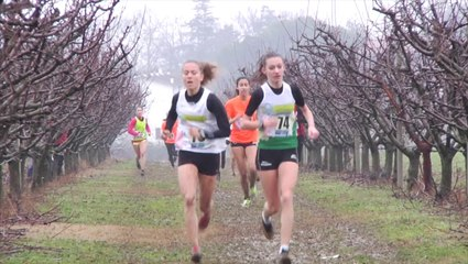 IMOLA CROSS - CADETTE