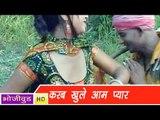 HD करब खुले आम प्यार | Karab Khule Aam Pyaar | Bhojpuri Hot Song भोजपुरी सेक्सी लोकगीत