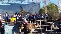 SUPER JARIPEO EXTREMO DE SANTA INES ACAMBARO GUANAJUATO MEXICO FEB 2015 VALIENTES JINETES MONTAN A LOS TOROS MAS SALVAJES DE LA GANADERIA LOCAL