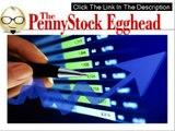 The Penny Stock Egghead + GET SPECIAL DISCOUNT + BONUS