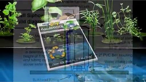 Aquaponics Systems  Easy DIY Aquaponics System DIY Aquaponics System