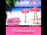 Flamingosi - Dance