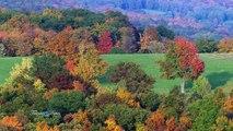 Giovanni Marradi - Autumn Wind