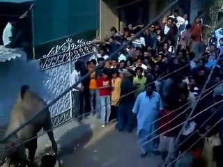 pakistani funny clips New Funny Clips Pakistani 2017 funny videos | funny clips | funny video clips | comedy video | free funny videos | prank videos | funny movie clips | fun video |top funny video | funny jokes videos | funny jokes videos | comedy funny