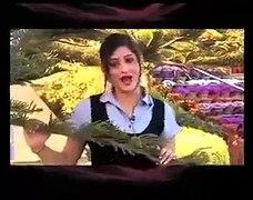 Pakistani funny video New Funny Clips Pakistani 20