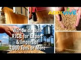 Purchase Bulk Rice for Export, Rice Exporting, Rice Exporters, Rice Exporter, Rice Exports