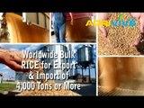 Buy Wholesale Bulk USA Rice, USA Rice Export, Bulk USA Rice Starch, Bulk USA Rice for Sale, Bulk USA Rice