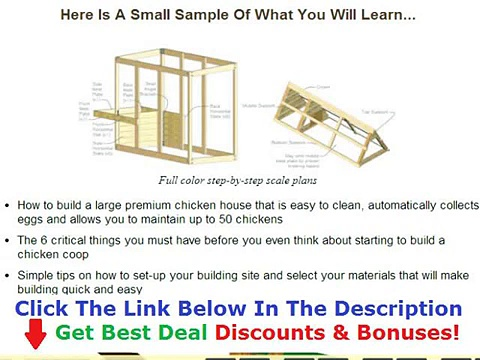 Building A Chicken Coop For 100 Chickens Discount + Bouns