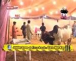 Zara Hut Kay Bakar Eid Funny Clips Pakistani funny videos | funny clips | funny video clips | comedy video | free funny videos | prank videos | funny movie clips | fun video |top funny video | funny jokes videos | funny jokes videos | comedy funny video.