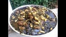 Cuisine Juive Tunisienne - La Pkaïla