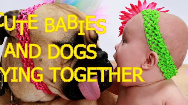 Cute babies and dogs playing together Funny baby & dog compilation