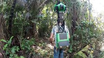 Google sent camera in Amazon : Google Street View through the deep forest