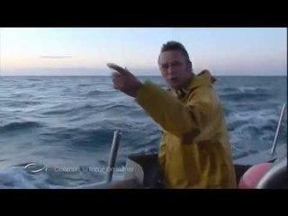 Pêcheurs de l'extrême au Raz Blanchard - Cotentin, la force de la mer - Thalassa (extrait)
