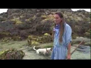 Des îles et des forts (extrait1) - Thalassa