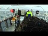 Energies écossaises - Ecosse - Thalassa (extrait)