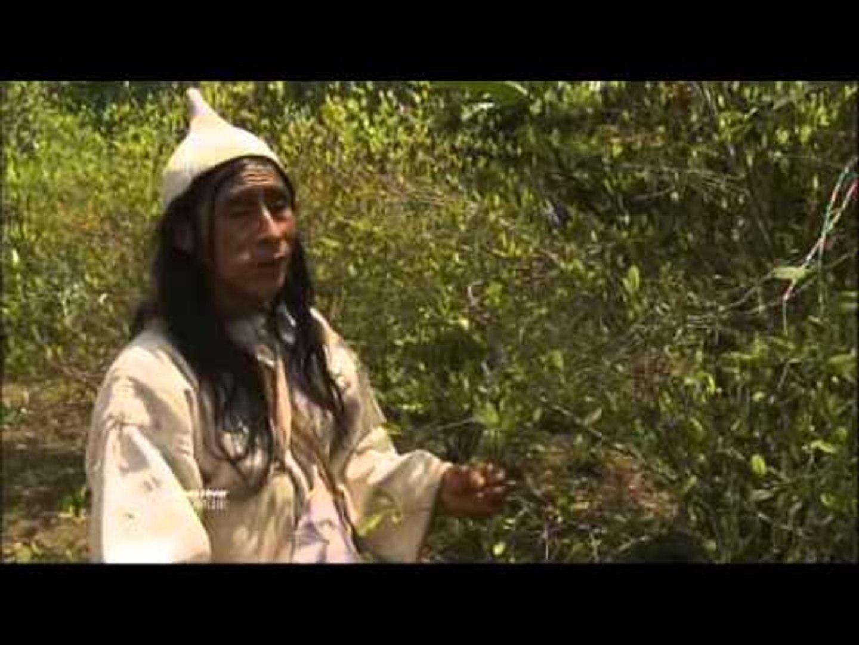 Teyuna, la cité perdue - Faut Pas Rêver en Colombie (extrait 2)
