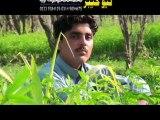 Malgari Noman Farooq Pashto Album 2015 Ishq Lewane