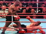 Mike Tyson Mma-Pride-k1-Ufc