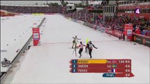 ChM ski nordique, ski de fond, relais H 4x10km, 27 février 2015 (2 sur 2)