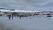 Kayaklı Koşu A-B Grubu Türkiye Ön Eleme Yarışları