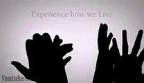 Amazing Hand Shadow Dance (hd)