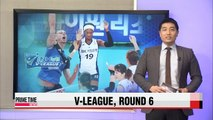 V-League: GS Caltex vs. IBK, Woori Card vs. Hyundai Capital