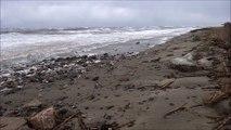 Tempête plage de San Pellegrino Folelli jeudi 5 mars 2015