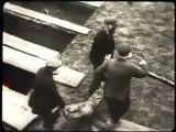 (Auschwitz) O sofrimento dos judeus. Carlos Legion ...