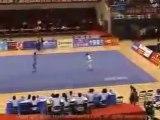 Wu Shu vs Kung Fu