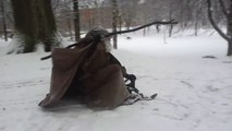 Meanwhile in Sweden... Gandalf is sledding in the snow