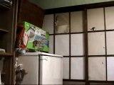 Le chat qui n'a pas peur des murs pour de la nourriture