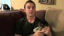 Les gros félins plus malins que les chats domestiques?
