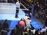 Road 2 Royal Rumble 94 Yokozuna vs The Undertaker Storyline Part 18 1/2