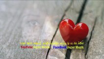 Yusuf Harputlu - seni seviyorum 2014 [YENİ KLİP HD İZLE]