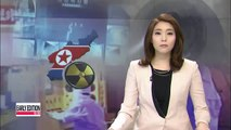 Nuclear expert doubts N. Korea's ability to possess 100 nuclear weapons by 2020
