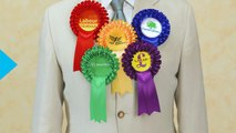 From Pirates to a Pub Landlord, the Fringe Parties Looking for Votes in the UK General Election