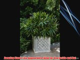 Amedeo Design 2514-29B ResinStone Iron Grid Planter 36 by 36 by 36-Inch Black