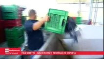 Mattia Fantinati (M5S) a Filo diretto su Sblocca Italia - MoVimento 5 Stelle