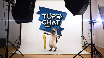 Top Chat - Bande annonce