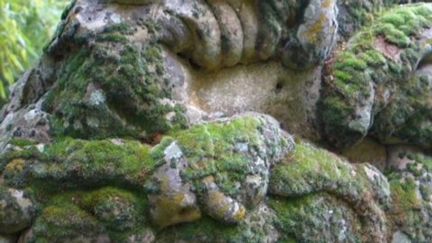 Jardin La Parmélie, une pierre tout à fait extraordinaire! n° Ami des Jardins de janvier p 21 (video Patrick Smith)