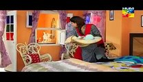 Digest Writer Episode 17 Full on Hum Tv Digest Writer Drama